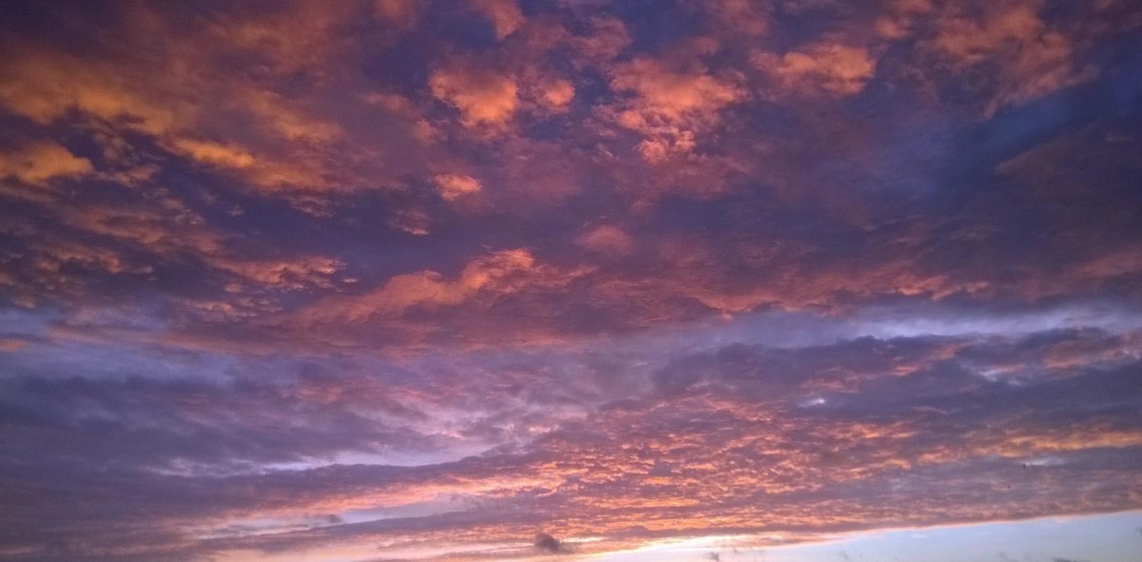 dawn 26JAN16 2 (2)